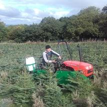 Martin inter-row sprays to suppress weeds